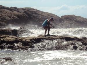 ilha.do.mel - catador de marisco