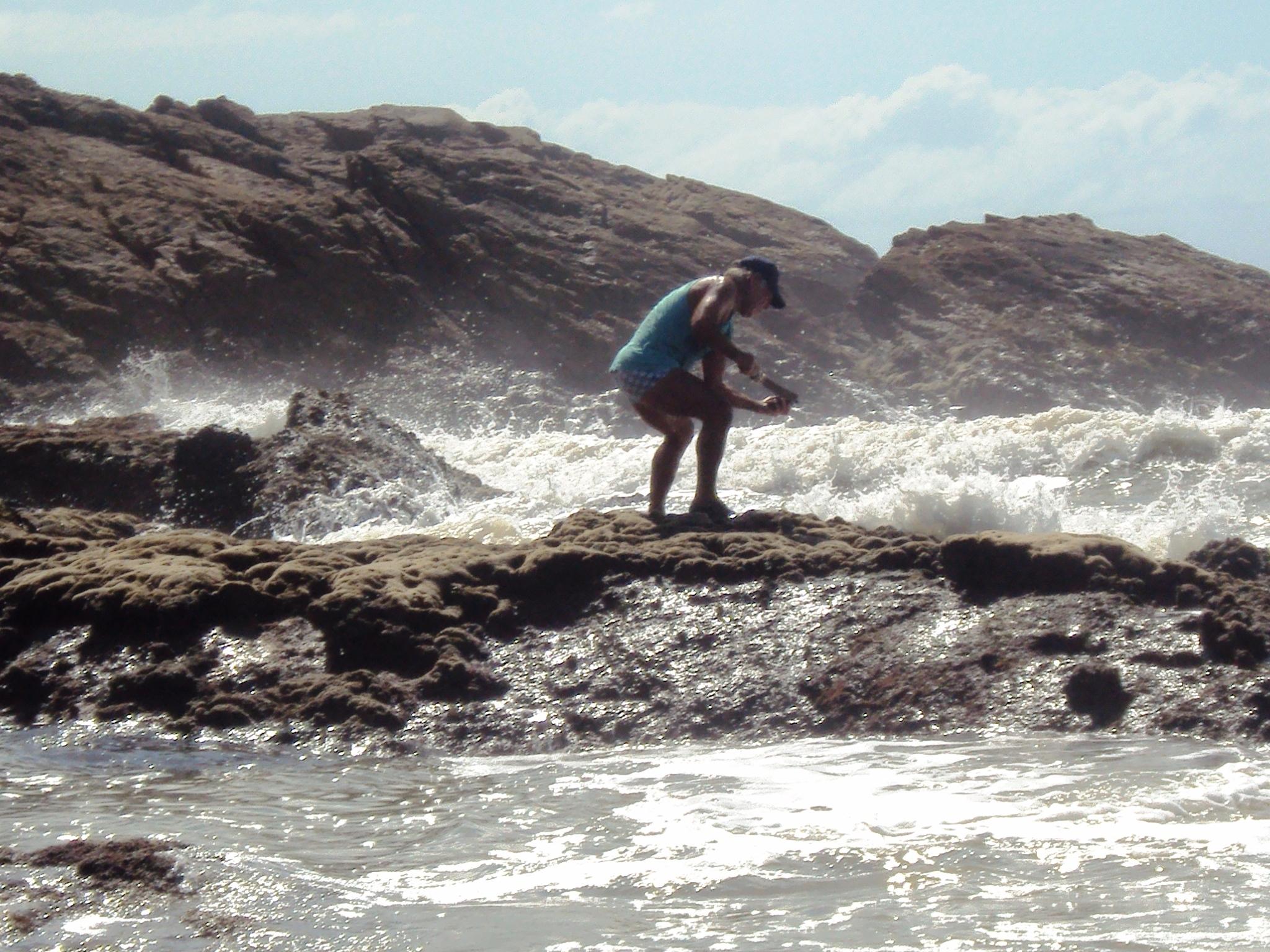 ilha do mel - catador de marisco