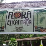 hostel pousada flora encantada