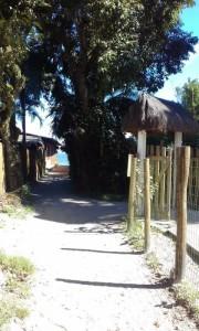 trilha2